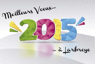 Voeux 2015 redim